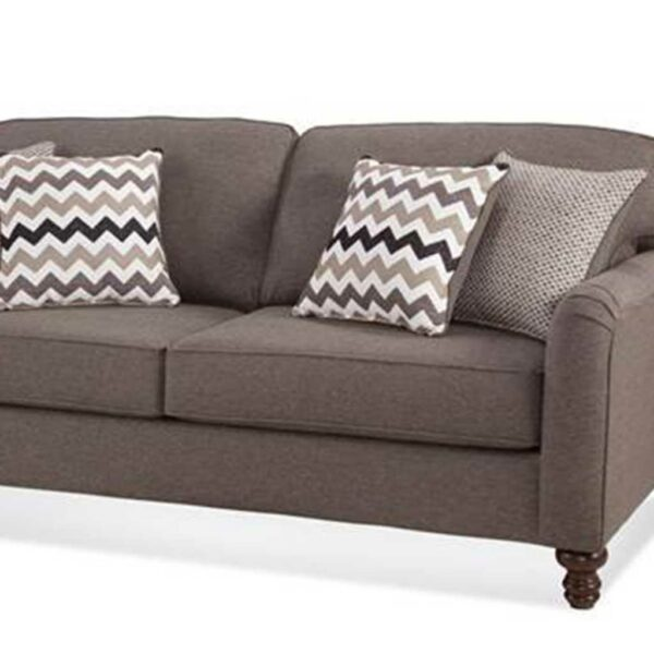 Congaree Package sofa with pillows